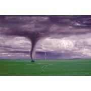 """Tornado & Lightning on Field Poster, 24"""" x 36"""""""