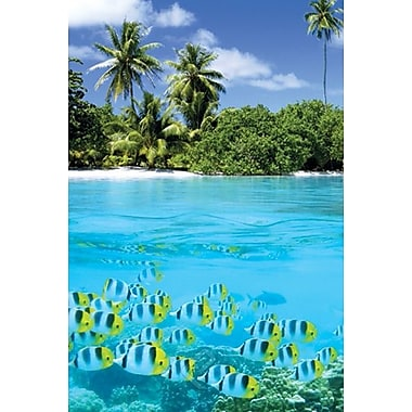 Tropical Scenery II Poster, 24