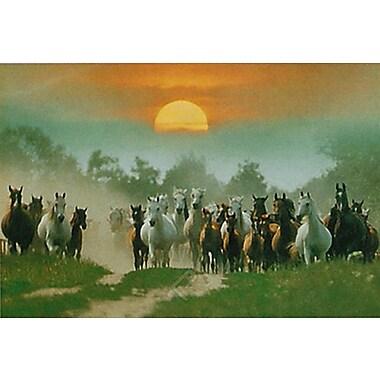 Wild Horses Poster, 36