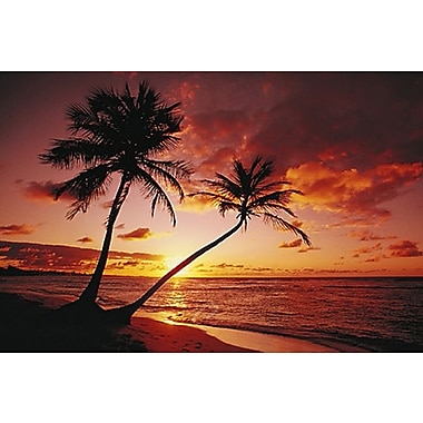 Tropical Beach & Ocean Sunset Poster, 24