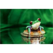 "Red Eyed Tree Frog Poster II, 36"" x 24"""