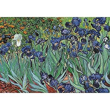 Van Gogh Gardens Vincent Poster, 24