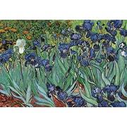 "Van Gogh Gardens Vincent Poster, 24"" x 36"""