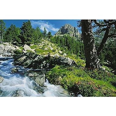 Ruisseau de montagne, affiche, 24 x 36 po