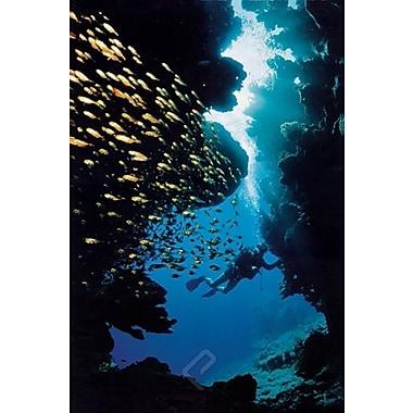 Plongée sous-marine, affiche, 36 x 24 po