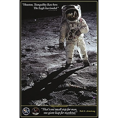Walk on the Moon Poster, 24