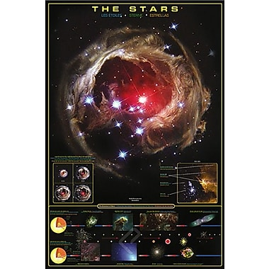 The Stars Poster, 24