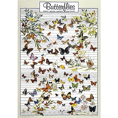 Papillons, affiche de 26 3/4 x 38 1/2 po