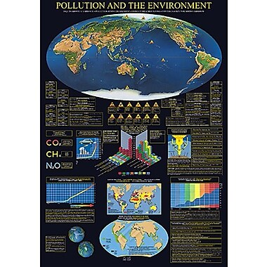 Pollution & the Environment Poster, 26 3/4