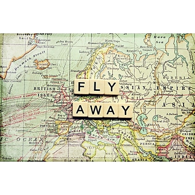 Marmont HIll 'Fly Away' Graphic Art Print on Wrapped Canvas; 12'' H x 18'' W