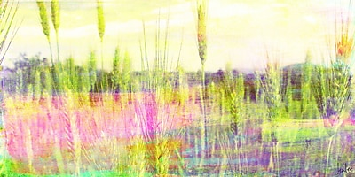 Marmont HIll 'Green Grass' by Jen Lee Painting Print on Wrapped Canvas; 22.5'' H x 45'' W