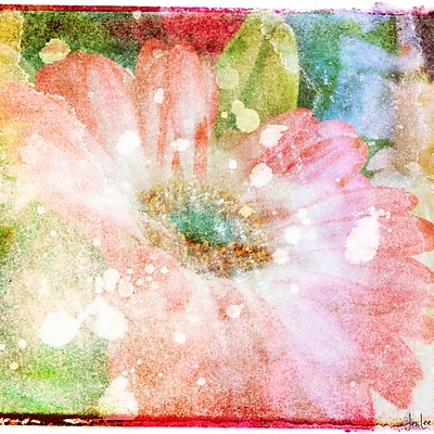 Marmont HIll 'Flower Fairytale' by Jen Lee Painting Print on Wrapped Canvas; 18'' H x 18'' W