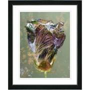 Studio Works Modern ''Autumn Amber Bud'' by Zhee Singer Framed Graphic Art in Green; Black