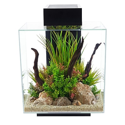 Hagen 12 Gallon Fluval Edge Aquarium Kit;