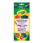 Crayola® - Crayons aquarelle, 12 par boîte, paq./12