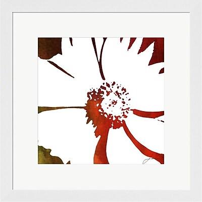 Evive Designs Peace Flowers III by James Burghardt Framed Painting Print