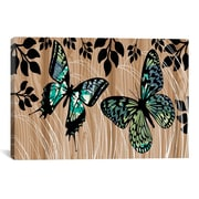 iCanvas Butterfly Patchwork by Erin Clark Graphic Art on Canvas; 26'' H x 40'' W x 1.5'' D