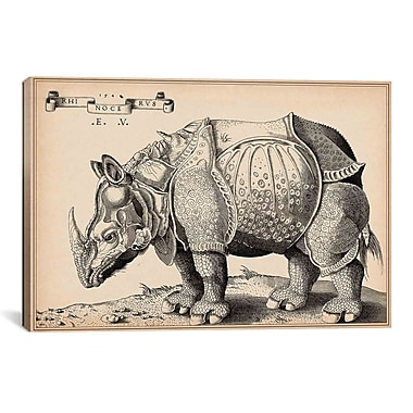 iCanvas Animal Rhinoceros by Enea Vico Graphic Art on Canvas; 18'' H x 26'' W x 0.75'' D