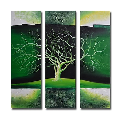Segma Radiance Nolana 3 Piece Graphic Art on Canvas Set