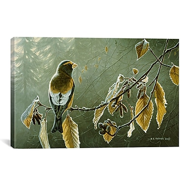 iCanvas Frosty Alder by Ron Parker Painting Print on Canvas; 18'' H x 26'' W x 1.5'' D