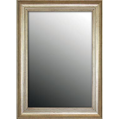 Second Look Mirrors Louis XIV French Silver Wall Mirror; 60.75''H x 24.75''W x 1.5''D