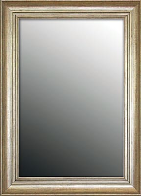 Second Look Mirrors Louis XIV French Silver Wall Mirror; 35''H x 17''W x 1.5''D