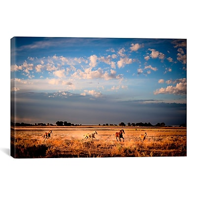 iCanvas Open Spaces by Dan Ballard Photographic Print on Canvas; 18'' H x 26'' W x 1.5'' D