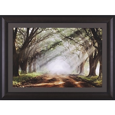Art Effects Evergreen Plantation by Mike Jones Framed Photographic Print