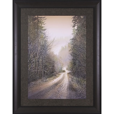 Art Effects I Couldn't See You by William Vanscoy Framed Photographic Print