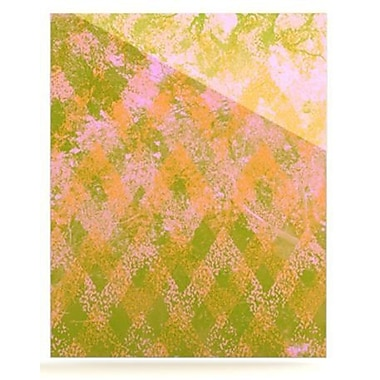 KESS InHouse Fuzzy Feeling by Marianna Tankelevich Painting Print Plaque; 36'' H x 24'' W