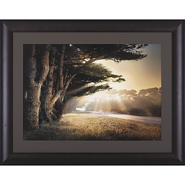 Art Effects No Place To Fall by William Vanscoy Framed Photographic Print