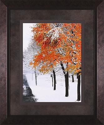 Art Effects Snow Fall III by Burney Lieberman Framed Photographic Print