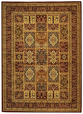 Safavieh Multi/Red Area Rug Polypropylene, 8' x 11'