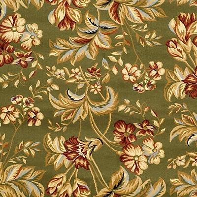 Safavieh Lyndhurst Collection Floral Sage Rug Polypropylene, 5'-3
