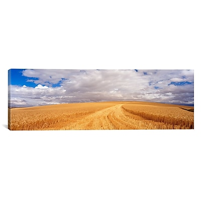 iCanvas Panoramic Wheat Field Washington Photographic Print on Canvas; 16'' H x 48'' W x 1.5'' D