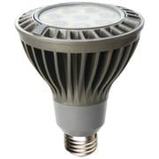 Can-BramarMD – Ampoule de recharge à DEL de même intensité que l'éclairage halogène de 75 W, 1050 lumens, blanc chaud, 6/bte