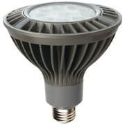 Can-BramarMD – Ampoule de recharge à DEL de même intensité que l'éclairage halogène de 100 W, 1520 lumens, blanc chaud, 6/boîte