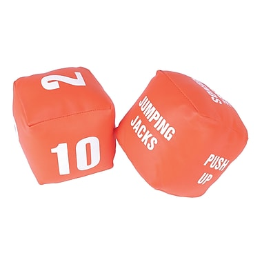 American Educational Products 2 Piece Fitness Dice (AEPYTC107)