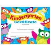 "Trend Enterprises 8 1/2"" x 11"" Owl Stars Kindergarten Certificate, 30/Pack (T-17009)"