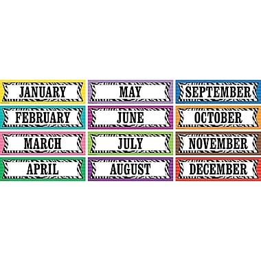 Teacher Created Resources Monthly Headliner, Colourful Zebra Stripes (TCR5352)