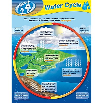 Teacher Created Resources® Water Cycle Chart, Science