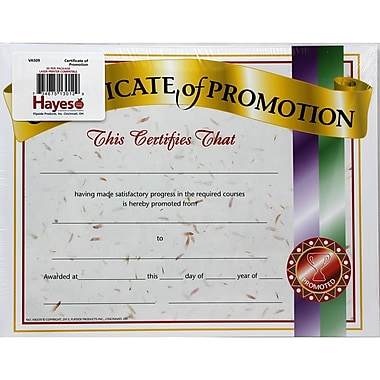 Flipside Certificate Of Promotion 1, 36/Pack (H-VA509)