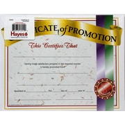 Hayes Certificate of Promotion 1