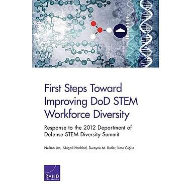 First Steps Toward Improving DoD STEM Workforce Diversity
