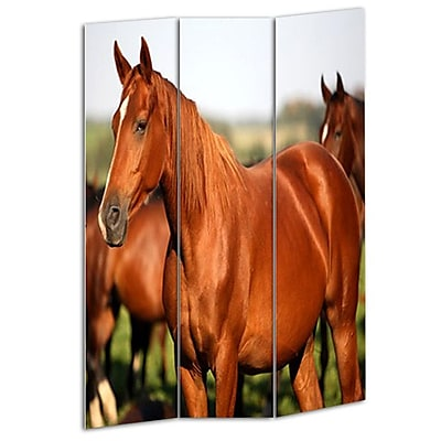 Screen Gems 72'' x 48'' Horse 3 Panel Room Divider