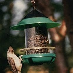 Becks Chickadee Tube Bird Feeder (WYF078276365474) photo