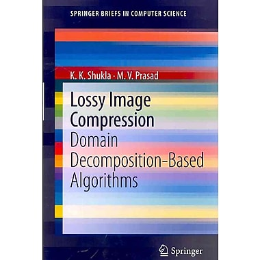Lossy Image Compression: Domain Decomposition-Based Algorithms