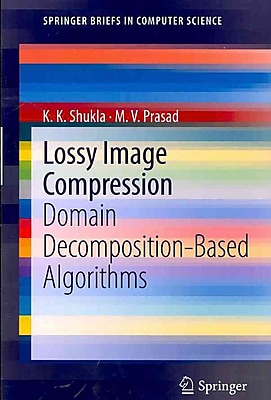 Lossy Image Compression: Domain Decomposition-Based Algorithms