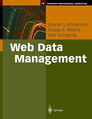 Web Data Management: A Warehouse Approach (Springer Professional Computing)