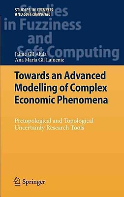 Towards an Advanced Modeling of Complex Economic Phenomena